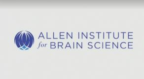 $300 million more for brain research