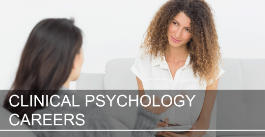 Clinical Psychologist / Counsellor