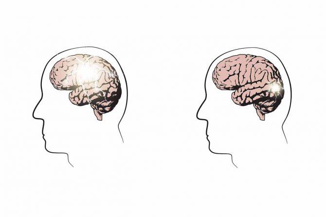 Is Epilepsy genetically inherited?